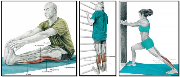 Что делать если болят икры ног после тренировки бега