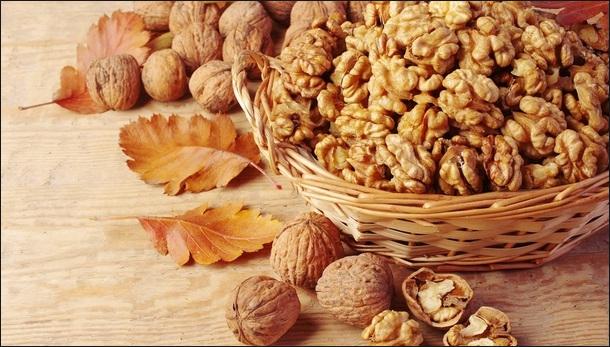 Польза и вред меда с орехами + 3 лучших рецепта заготовки
