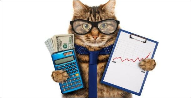 Изображение - Как заработать денег своими руками kot-1