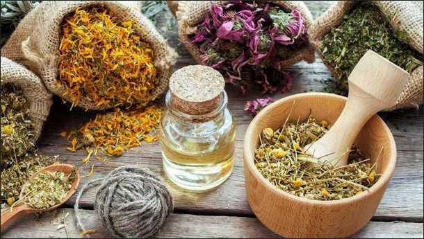 Какой чай полезен для ускорения обмена веществ?